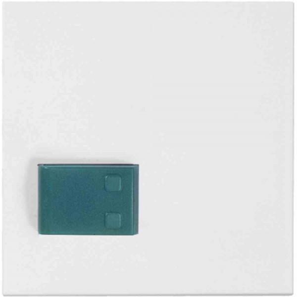 88881H3N Abdeckplatte mit Taste -grün-, weiß